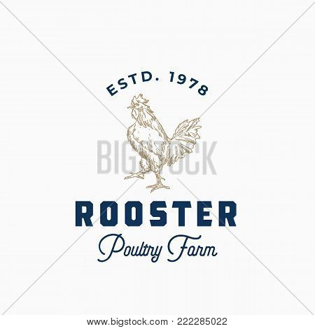 Rooster Poultry Farm Abstract Vector Sign, Symbol or Logo Template. Hand Drawn Rooster Sillhouette with Retro Typography. Vintage Emblem. Isolated.