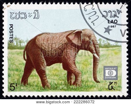 LAOS - CIRCA 1987: a stamp printed in Laos shows Indian elephant, elephas maximus indicus, is one of three recognized subspecies of the Asian elephant, circa 1987