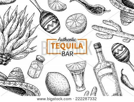Tequila bar vector label. Mexican alcohol drink  drawing. Bottle, shotglass, salt shaker, lime, agave frame sketch. Engraved illustration for restaurant menu, brochure, template.