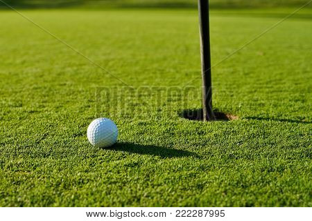 Golf Ball On The Green Grass Near To Pitch.