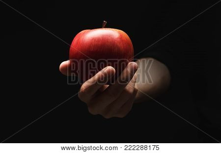 Male hand holding and offering fresh red apple on black isolated studio background, copy space, low key