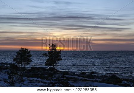 Sunset by the Baltic Sea on the Winter Solstice day 2017.  Ice and snow on the rocky shore. Trees.