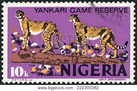 NIGERIA - CIRCA 1973: a stamp printed in Nigeria shows African Leopards, Panthera Pardus Pardus, Animal, Yankari Game Reserve, circa 1973