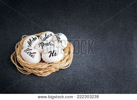 Easter eggs with the hand lettering inscription Hello (Aloha, Hi, Ciao, Salam, Hola) in different languages in decorative nest on a dark background. Pascha eggs with text word décor and copy space.