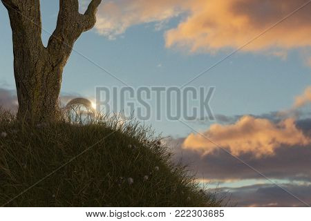 3d rendering of tree on grassy mound with crystal ball in the beautiful evening sunlight