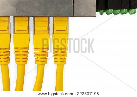 4 yellow UTP patch cords connected in ethernet switch, with top view. Isolated on the white background.