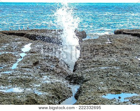 Water gushing from a rock, Goat Island, New Zealand