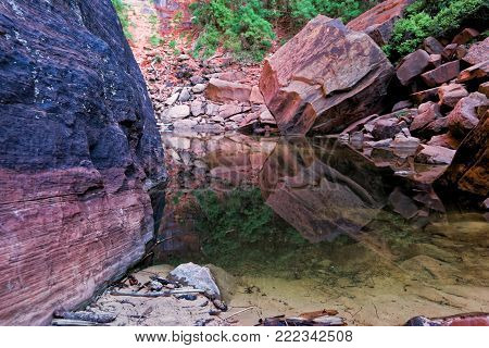 Water reflection of rock mountains in the pond from Upper Emerald Pool Trail, near Zion Lodge, Zion National Park