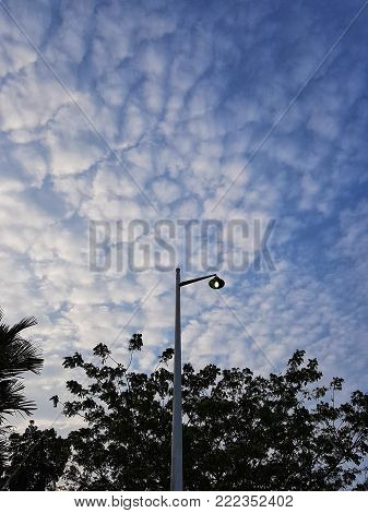 Beautifull shape of cloud at dawn with blue sky and tree