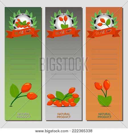 Abstract vector icon illustration logo for whole ripe rose hips branch with green leaf in background. Rose Hip pattern consisting of berry label, raw sweet rosehip. Eat fresh red roses hips for health