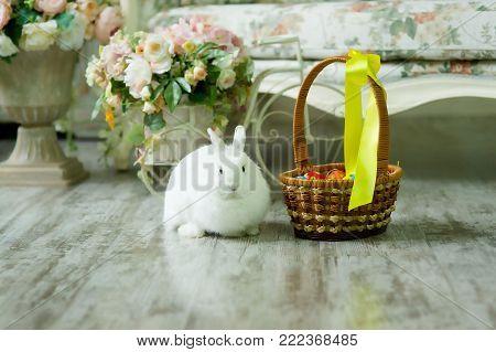 Little White Easter Bunny Sitting Near A Basket.