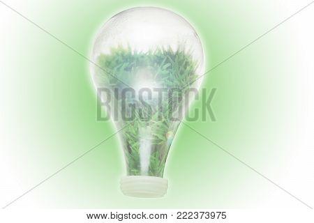 Renewable Energy Concept For Clean Bio Energy