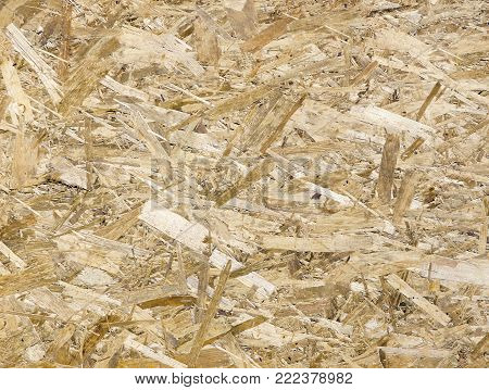 A Fiberboard. Compressed light brown wooden texture