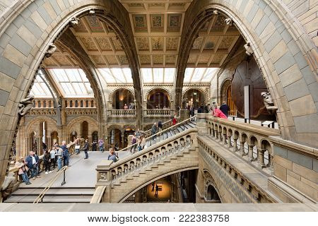 London's Natural History Museum And The Hintze Hall