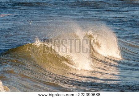 Waves on the Atlantic Ocean crest and crash near the beach.