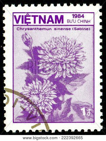 Ukraine - circa 2018: A postage stamp printed in Vietnam show flower Chrysanthemum sinense. Series: Fauna and Flora. Circa 1984.