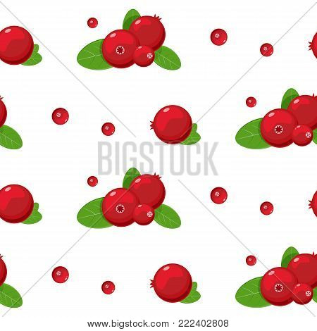 cranberry seamless pattern. Stock vector. Vector illustration for pattern, badge, label, textile tag etc