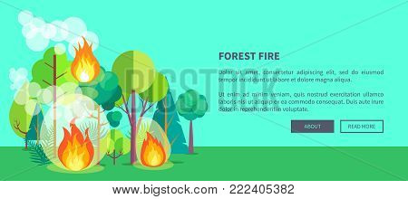 Forest fire web poster of raging wildfire. Vector illustration of forest burning fiercely with bushes, trees aflame and a lot of smoke against background