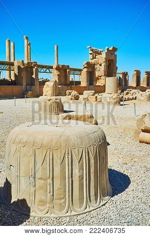 The ancient columns' capitals with preserved carved patterns in Persepolis archaeological site, Iran.