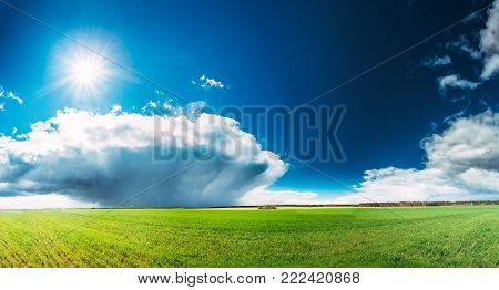 Countryside Rural Field Or Meadow Landscape With Green Grass Under Spring Blue Sky With White Fluffy Clouds And Shining Sun. Rain Clouds On Horizon On A Sunny Day. Panorama Of Agricultural Landscape.