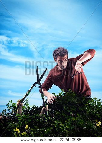 Man trim a bush with scissors and a trimmer bush gets out . Concept of protecting nature