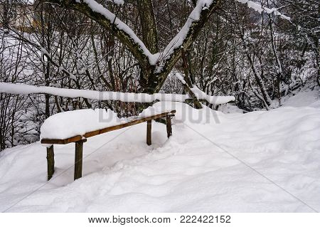 wooden bench in snowy outdoors. lovely winter scenery in park