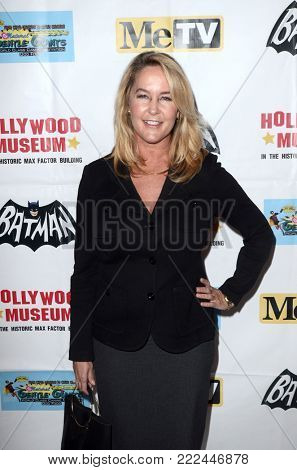 LOS ANGELES - JAN 10:  Erin Murphy at the Batman '66 Retrospective and Batman Exhibit Opening Night at the Hollywood Museum on January 10, 2018 in Los Angeles, CA