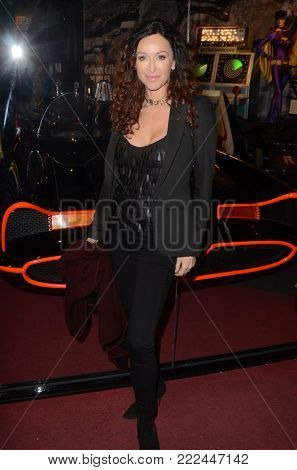 LOS ANGELES - JAN 10:  Sofia Milos at the Batman '66 Retrospective and Batman Exhibit Opening Night at the Hollywood Museum on January 10, 2018 in Los Angeles, CA