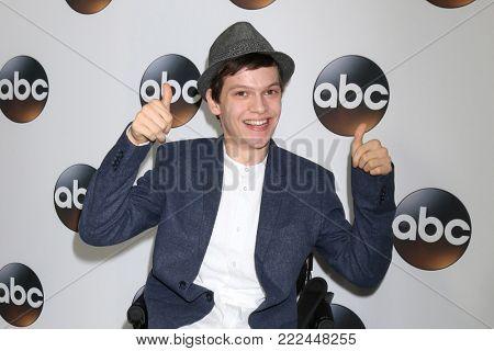 LOS ANGELES - JAN 15:  Micah Fowler at the 2018 NAACP Image Awards at Convention Center on January 15, 2018 in Pasadena, CA