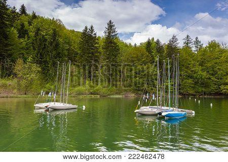 Boats In Marina At Bohinj Lake, Julian Alps