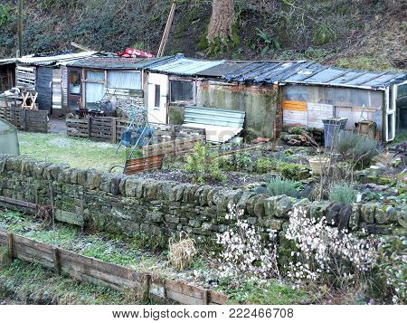 british allotments with typical improvised wooden sheds made of recycled materials in winter