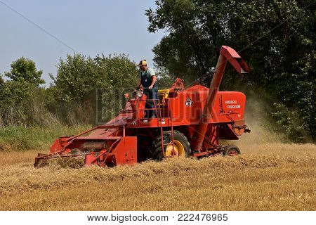 ROLLAG, MINNESOTA, Sept 2, 2017: An old self propelled Massey Ferguson combine is harvesting wheat at the annual WCSTR farm show in Rollag held each Labor Day weekend where 1000's attend.