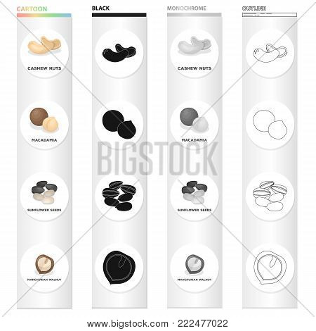Delicacy, treats, product and other  icon in cartoon style.Nut, cashew, macadamia, icons in set collection.