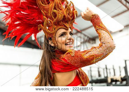 Brazilian Woman at Carnaval Party