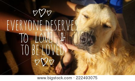 Motivational and inspirational quotes - Everyone deserves to love and to be loved. With vintage styled background.