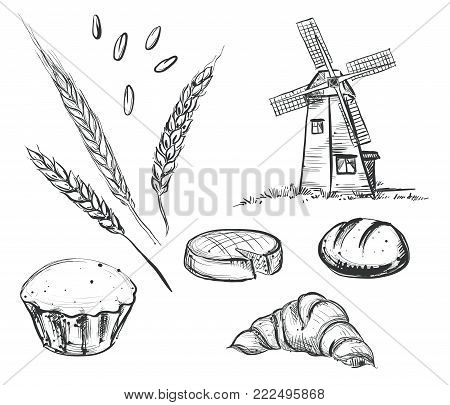 Hand drawn black and white illustration of old mill, bread, wheat ear. sketch. Vector eps 8.