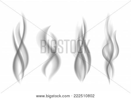 Gray  smoke isolated on white  background. Dark steam.  Realistic  smog vector texture.