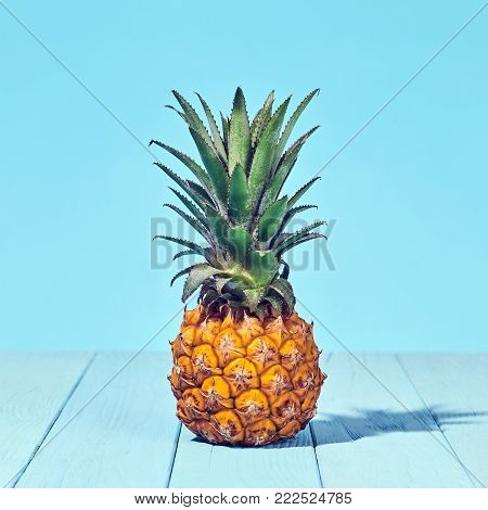 Tropical Pineapple Fruit. Bright Summer Color. Creative Minimal. Hot Summer Vibes. Sunny Beach background. Trendy fashion Style.