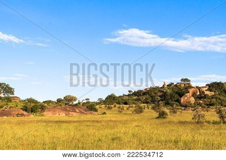 Sky and rocks on endless plain of Serengeti. Tanzania, Africa