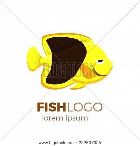 Marine life tropical colorful fish set illustration in cartoon. Aquarium draft vector design.   rock beauty angelfish logo
