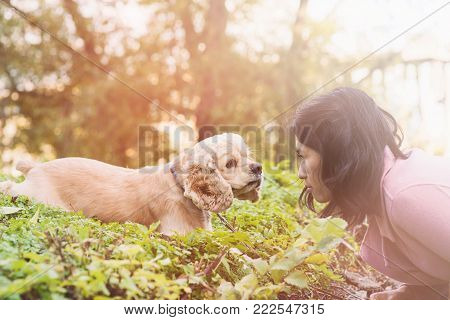 Asian woman training her dog in park. American cocker spaniel lies on green grass.