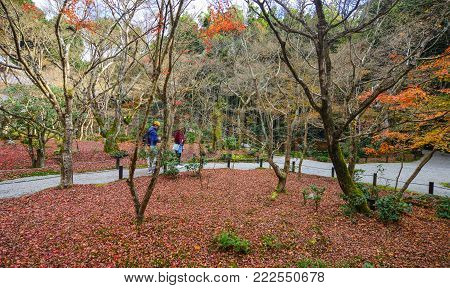 Kyoto, Japan - Nov 29, 2016. People walking at autumn garden in Kyoto, Japan. Kyoto was the capital of Japan for over a millennium, and carries a reputation as its most beautiful city.