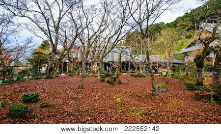 Kyoto, Japan - Nov 29, 2016. People visit an autumn garden in Kyoto, Japan. Kyoto was the capital of Japan for over a millennium, and carries a reputation as its most beautiful city.
