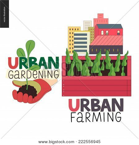 Urban farming, gardening or agriculture sign logo. A wooden seedbed with leaves of salad, a house on the background. A hand wearing gauntlet holding a sprout,