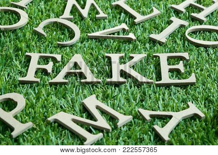Wood letter in word fake on artificial green grass wit English alphabet background