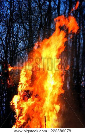 Traditional burning of Maslenitsa Scarecrow on seeing Russian winter on last day of Shrovetide in dark evening. Burning effigy on forest background. Vertical orientation