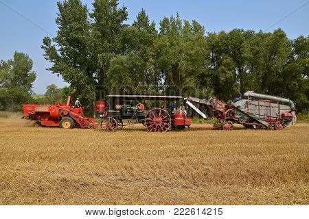 ROLLAG, MINNESOTA, Sept 2, 2017: A Self propelled Massey Ferguson combine, Minneapolis Steam Engine, and threshing machine are preparing for harvest demonstrations at the annual WCSTR farm show in Rollag held each Labor Day weekend where 1000's attend.