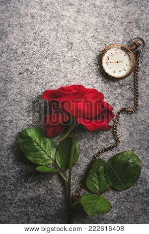 Red rose and a vintage pocket clock - Romantic image with a beautiful single red rose and an antique pocket clock, on a retro fabric background.
