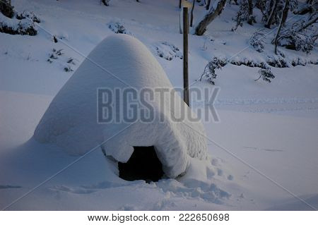 An igloo made on holidays in the snow. The entrance is visible. Snow covered tress and bushes are in the background.