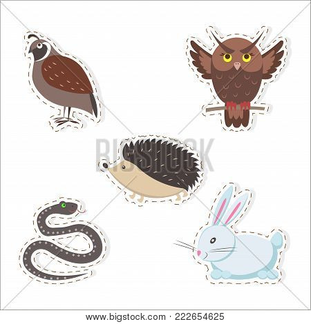 Cute forest animals stickers isolated on white background. Thick hazel grouse, brown owl, small hedgehog, fluffy rabbit and wriggling snake vector illustrations set. Cartoon funny creatures pictures.